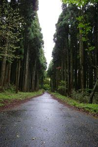 Hakone_gw_09