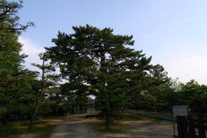 2009gwj_03