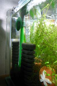 Aqua_20100130_04