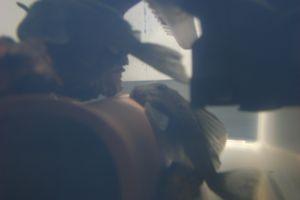 Aqua_20120228_03