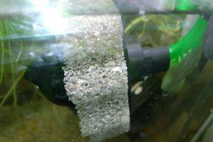 Aqua_20120331_03
